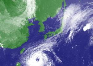 台風シーズンは業者も依頼を断る
